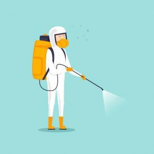 Control de pulgas y garrapatas en Cali